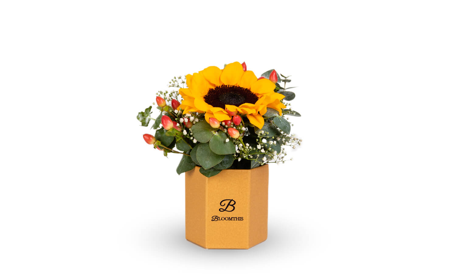 bloomthis-sunflower-products-tinkerbell