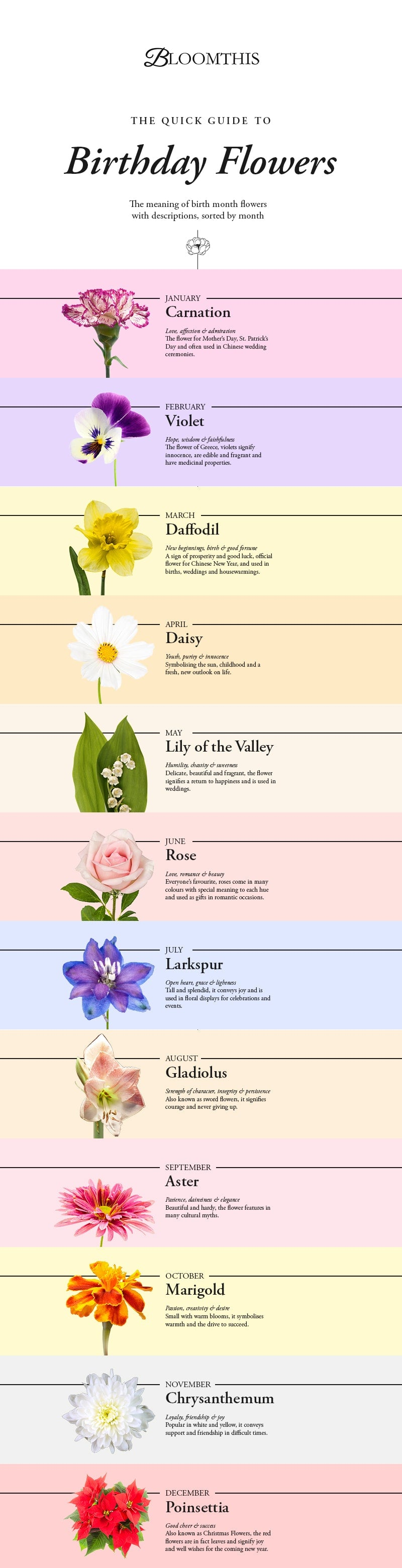 A quick guide to birthday flowers bloomthis check our infographic below for a great place to start izmirmasajfo