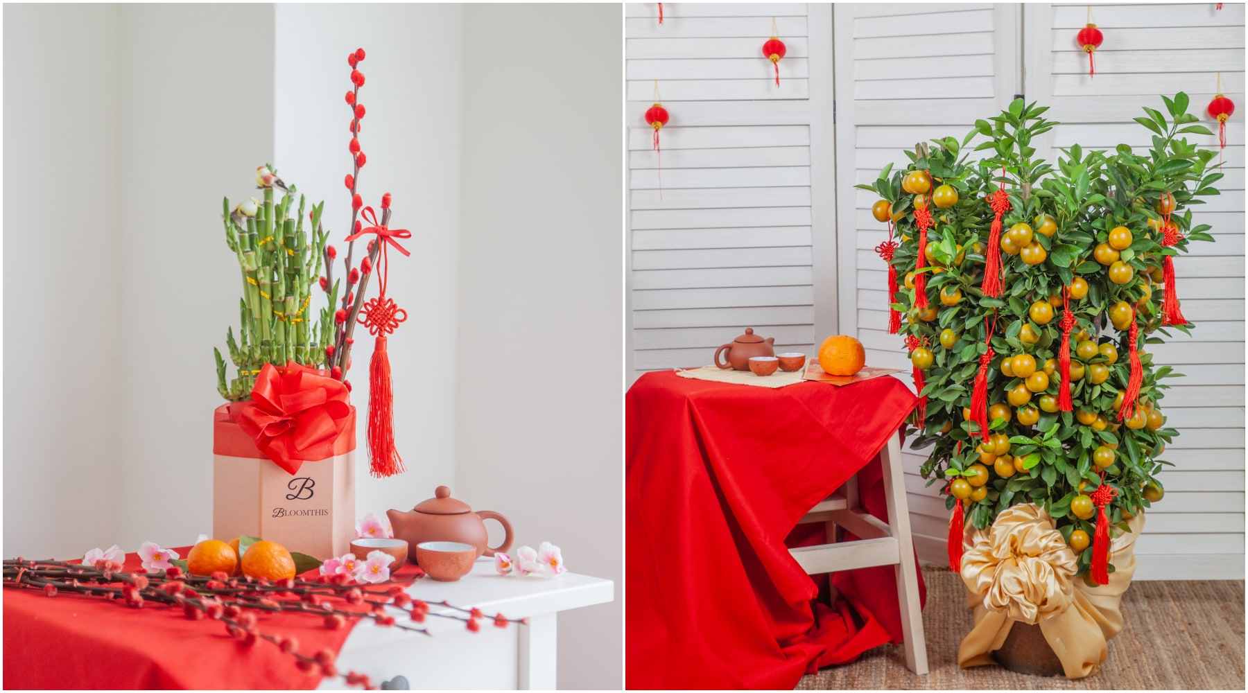 bloomthis-chinese-new-year-gift-guide-chinese-lucky-bamboo-lime-tree