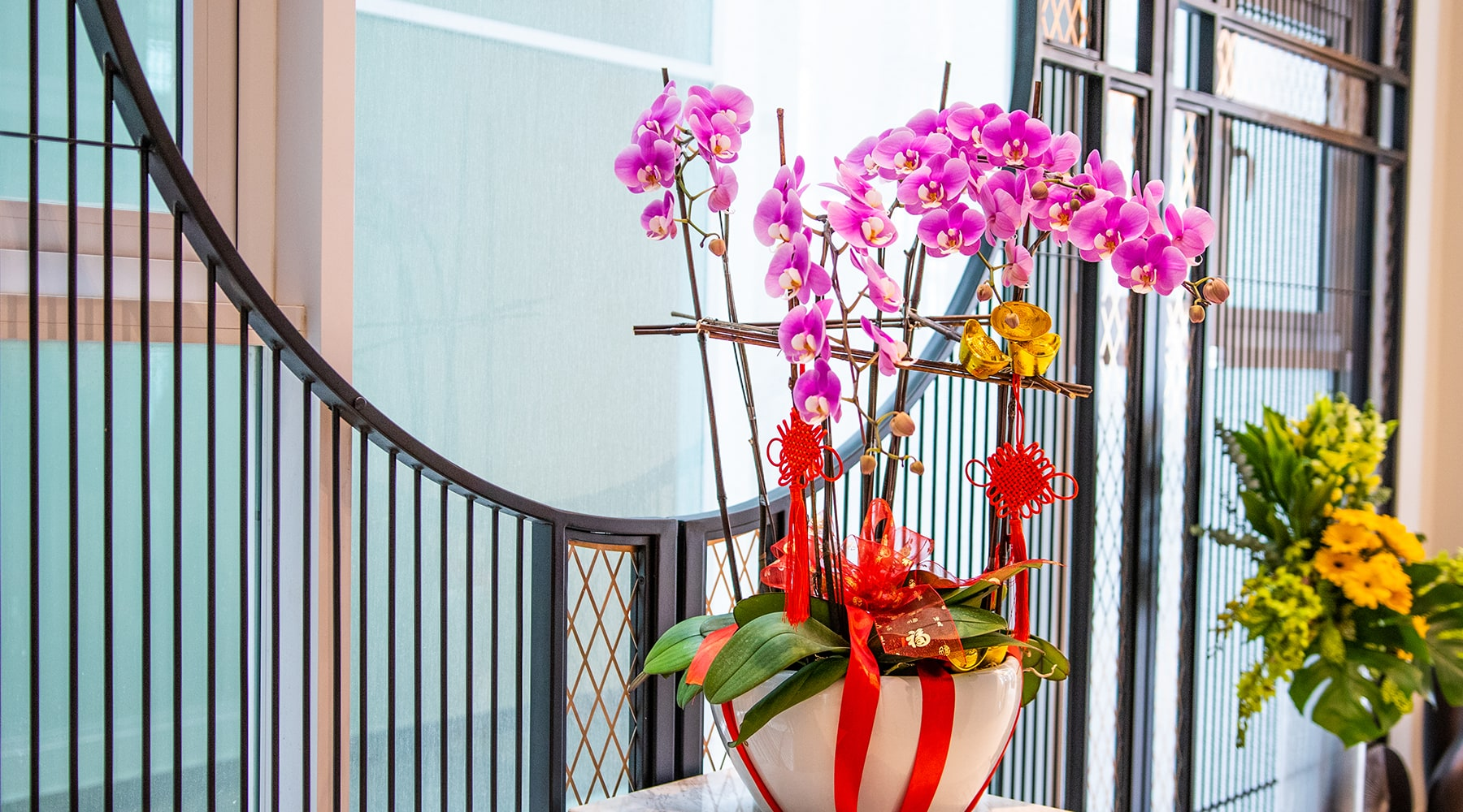 bloomthis-chinese-new-year-gift-guide-chinese-new-year-phalaenopsis-orchid-5-stalks