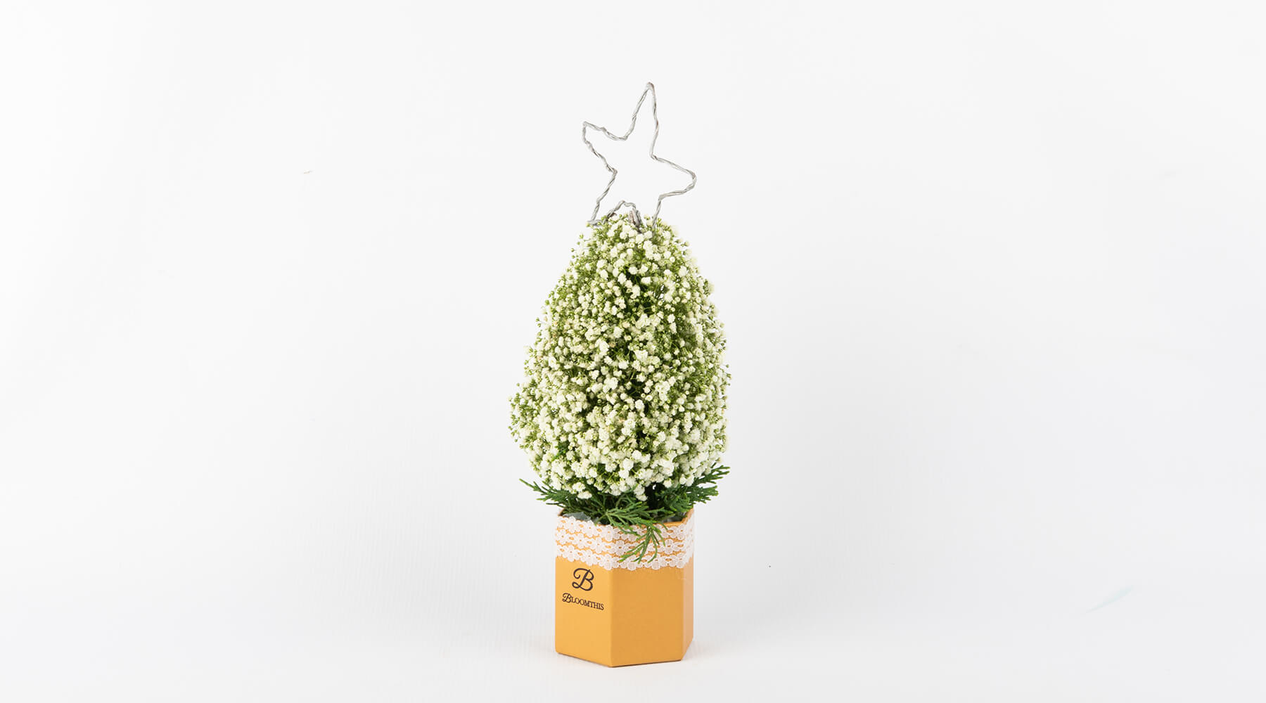 bloomthis-mini-christmas-tree-azrael