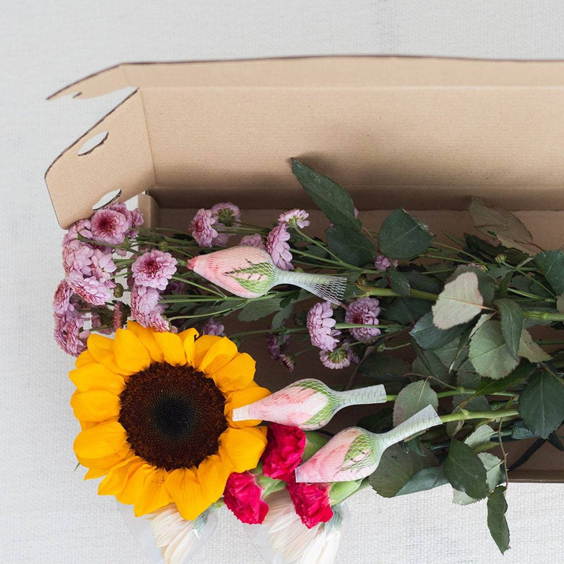 Catherine Heart Box Flowers DIY Kit