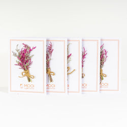 5-in-1 Dried Caspia Designer Cards Pack