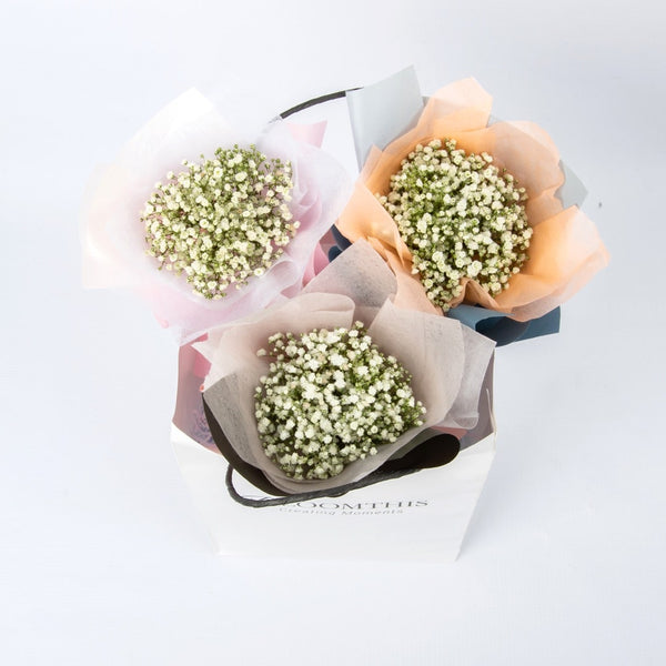 Harlow Baby's Breath Mini Bouquet