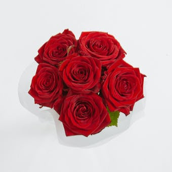 Sweet Valentine - Simply 6 Red Roses