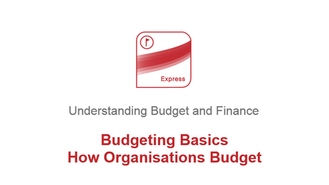Budgeting Basics: How Organisations Budget