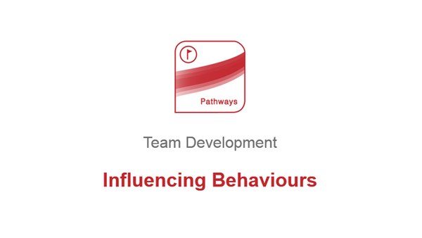 Team Development: Influencing Behaviours