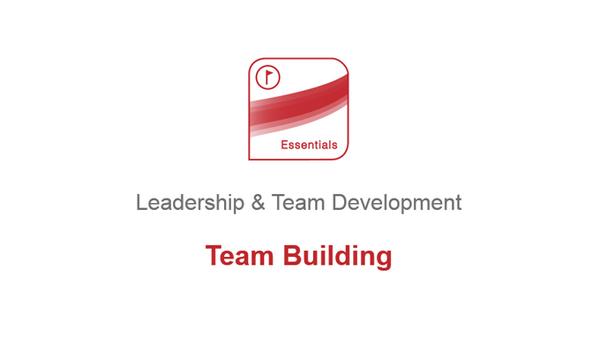 Leadership and Team Development: Team Building