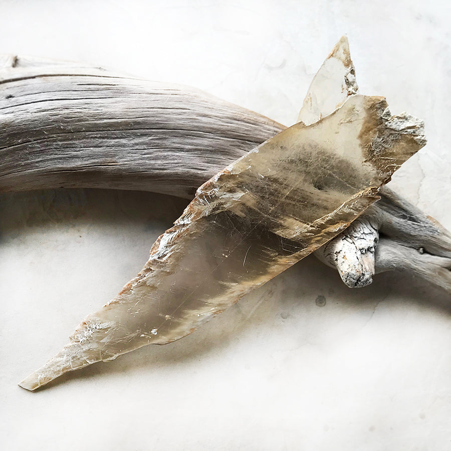 Golden Selenite ~ 'angel wing' shape