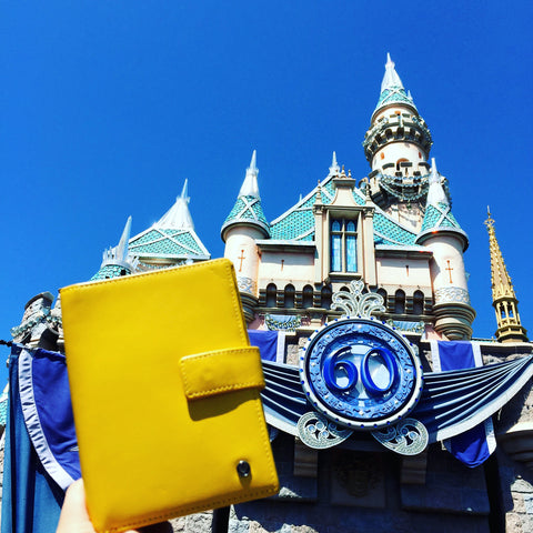 Up & Away passport holder in Disneyland
