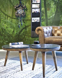 Salontafels en sidetable