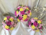 Baby Pink, Hot Pink & Yellow Rose Foliage