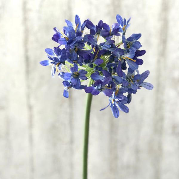 artificial flowers luxury faux silk blue agapanthus lifelike realistic faux flowers buy online from Amaranthine Blooms UK