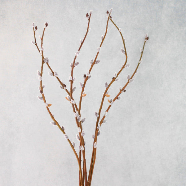 artificial flowers luxury faux silk brown pussy willow lifelike realistic faux flowers buy online from Amaranthine Blooms Hong Kong UK