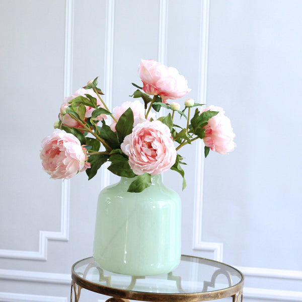 TRADE pale pink classic peony