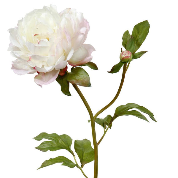 this luxury lifelike and realistic artificial white peony silk flower is available from Amaranthine Blooms in Hong Kong and UK