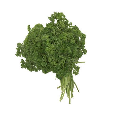 PARSLEY, CURLY, BUNCH
