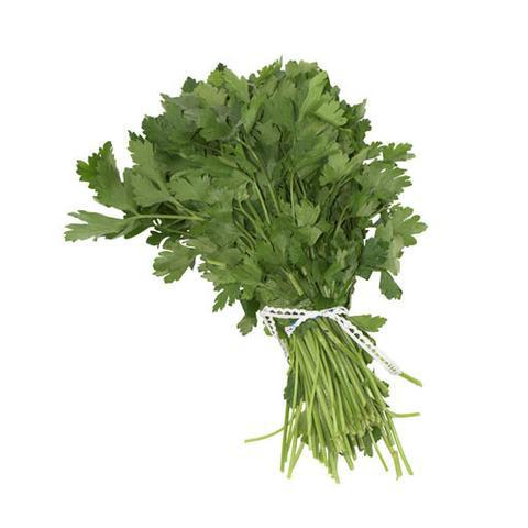 PARSLEY, ITALIAN, BUNCH