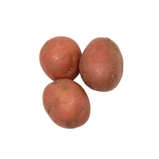 POTATOES, MINI RED