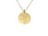 Protected Necklace - 18k yellow Vermeil on solid gold chain
