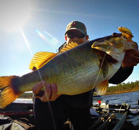 Livetarget hollow body sunfish bama frogs for Fishing line target