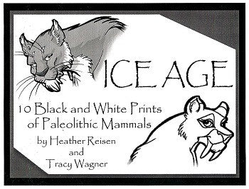 ICE AGE Portfolio (Tracy Reynolds & Heather Reisen) (2000)