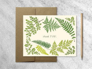 Cards Favorite Story Fern Thank You Card