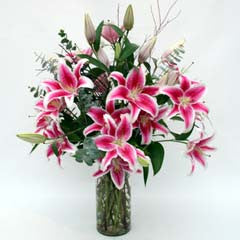 BREATHTAKING LILIES IN PINK
