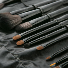 All Dolled Up | Professional Makeup Brush Set