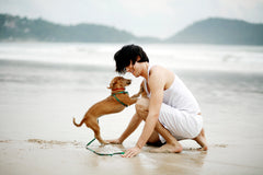 human and dog on beach bonding