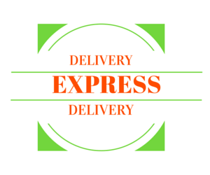 Express Delivery - Ceiba Imports
