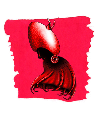 Anderillium Fountain Pen Ink - Vampire Squid Red