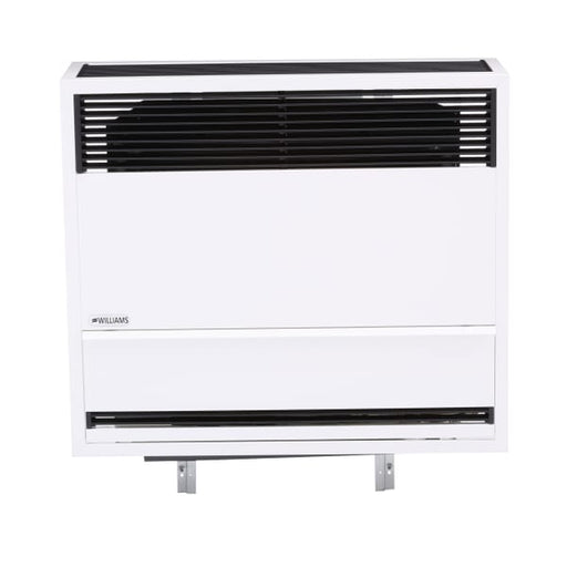 Williams Direct-Vent Heater 30,000 BTU