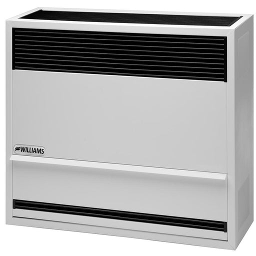 Williams Direct-Vent Heater 22,000 BTU