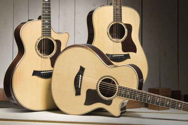 Taylor 800 Deluxe Series Guitars