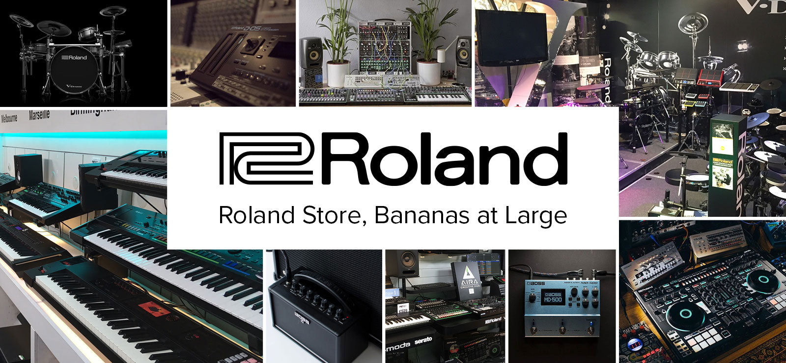 THE ROLAND STORE -  Bananas At Large