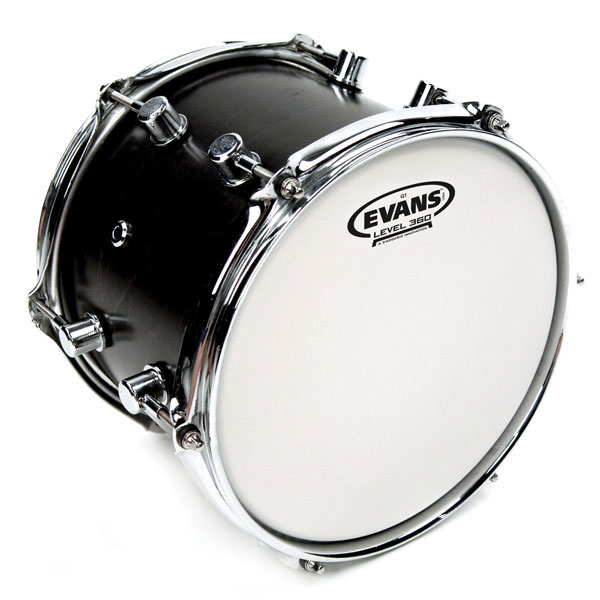 Evans B13G1 13 in. G1 Coated Timbale/Snare/Tom Head - Bananas at Large - 2