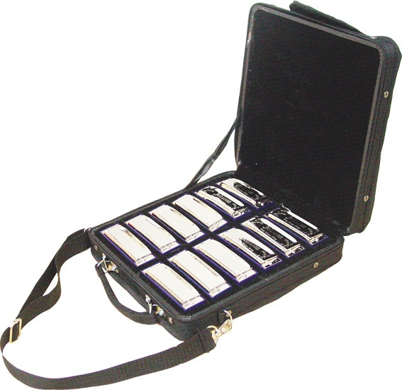 Blues King BK-520-SET Harmonica Set - Bananas At Large®