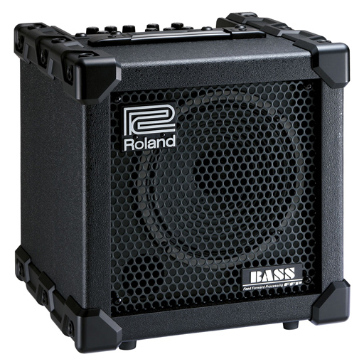 Roland CB-20XL Cube Bass Amp 20-Watt - Bananas at Large