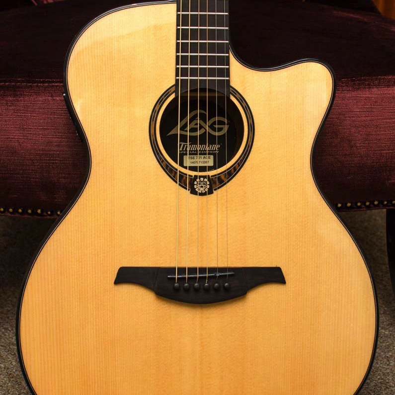 Lag TSE701ACE Tramontane Limited Edition Acoustic-Electric Guitar with Case - Snake Wood - Bananas at Large - 1