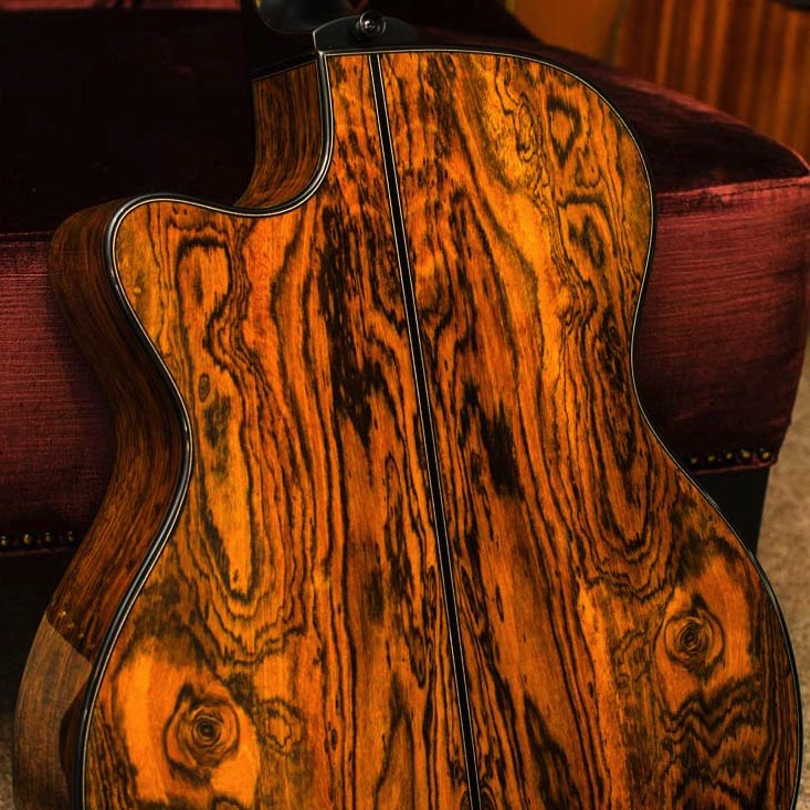 Lag TSE701ACE Tramontane Limited Edition Acoustic-Electric Guitar with Case - Snake Wood - Bananas at Large - 4