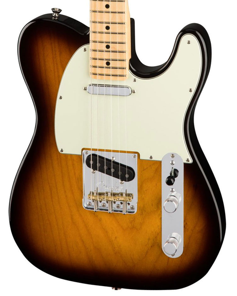 Fender American Pro Telecaster, Maple Fingerboard - 2 Color Sunburst - Bananas at Large - 1