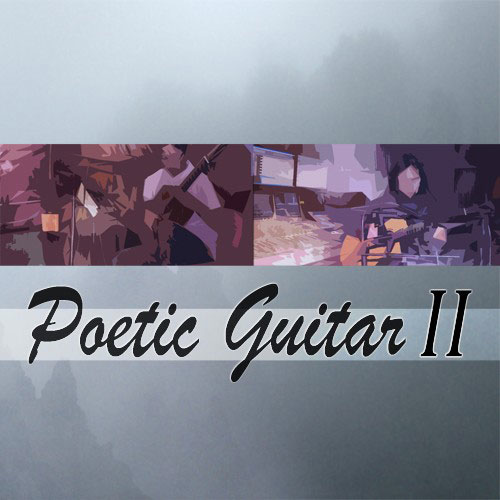 Best Service Poetic Guitar II Easy to Use Virtual Guitar Plugin [Download] - Bananas At Large®
