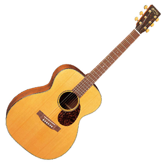 Martin SWOMGT Sustainable Wood Series Acoustic Guitar with Case - Bananas at Large