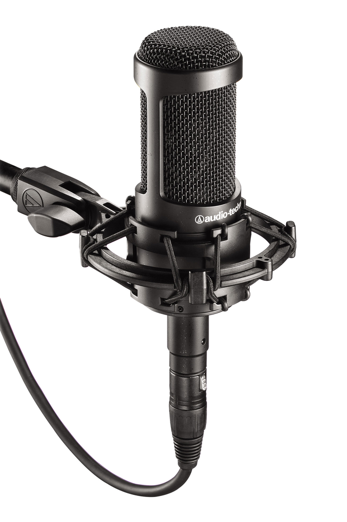 Audio Technica AT2035 Cardioid Condenser Microphone - Bananas At Large®