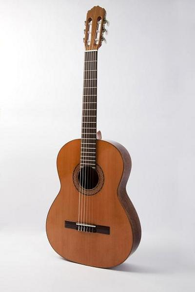 Raimundo Model 104B Estudio (Studio) Series Acoustic Guitar with Solid Cedar Top - Bananas at Large
