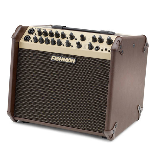 Fishman PRO-LBX-600 Loudbox Artist - Bananas at Large - 1