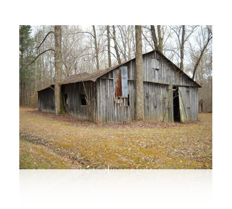 Impulse Record Small Barn [Download] - Bananas At Large®
