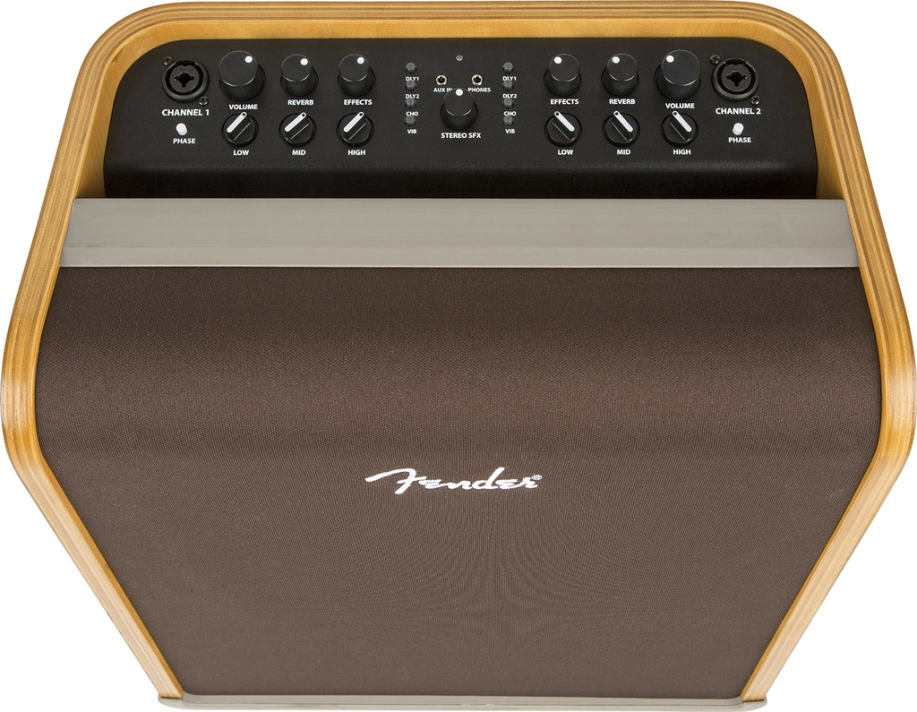 Fender ACOUSTIC SFX 120V - Bananas at Large - 2
