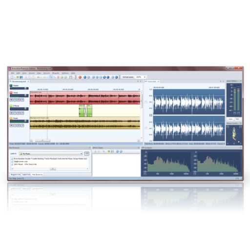 Acon Acoustica Standard Comprehensive Stereo Audio Editor [Download] - Bananas at Large - 1